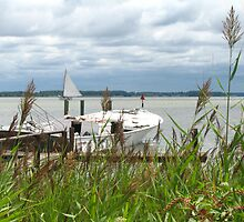 """""""Boat and Reeds"""" by Jennifer L. Moore"""