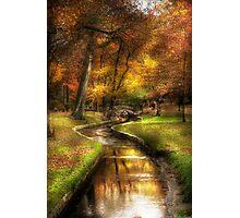 By a little bridge Photographic Print