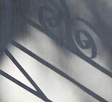 Shadow of a Gate by siegfrieds