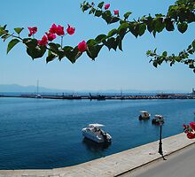 Greek Harbour by Swell Photography