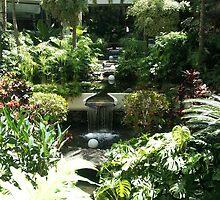 jardin lanzarote by poesierouge