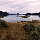 Patagonian lake, Tierra del Fuego, Argentina by Elaine Stevenson
