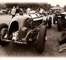Vintage Paddock by Paul Woloschuk