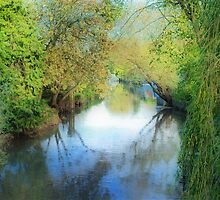 The River by Catherine Hamilton-Veal  ©