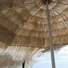 Beach Umbrella by jojobob