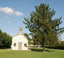 Chiesa di San Giovanni with Tree by jojobob