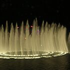 Vegas Water Show by Debbi Tannock