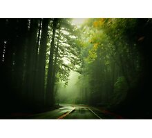 Driving Through Fog Photographic Print