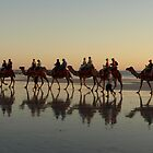 Cable Beach Camel Reflections (View Large) by Richard Cassar