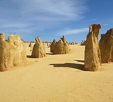 Pinnacles Desert by Richard Cassar
