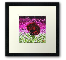 Ugly on beautiful Framed Print