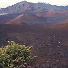 Haleakala moonscape by MPDurbin