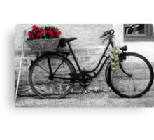 French Wheels And Onions! Canvas Print