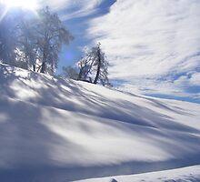 Shadowy snow on a sunny day. by Elizabeth Stevens