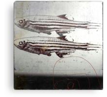 « des poissons » Canvas Print
