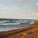 Sunset Bay Rock Beach by Karen K Smith