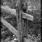 Rustic Post by Catherine Palmer
