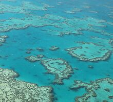 Great Barrier Reef by Richard Cassar