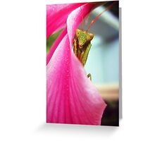 Beautiful Prayer Greeting Card