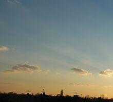 Pagoda Sunset by Alexei