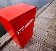 Fire Hydrant by Cathy Middleton