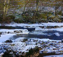 River Swale at Keld,North Yorkshire. by Trevor Kersley