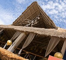 Straw Roof by Igor Janicijevic