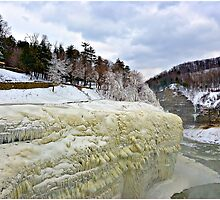 Letchworth State Park 2 by LocustFurnace