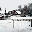 Snowed In Country Farmhouse by Merilyn