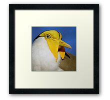 The Beautiful World Of The Flying Wonders ~ Part Three Framed Print