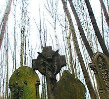 Gravestones by LonePilgrim