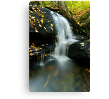A Small Falls in Autumn Canvas Print