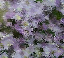 Lavender  by Deborah  Benoit