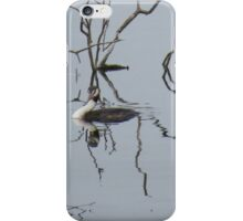 Now you see him.... iPhone Case/Skin