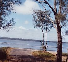 Lake Budgewoi, Mid-Day, Viewed from Ocowolrolong Point, Lakehaven, Central Coast, NSW by John Howard Reid