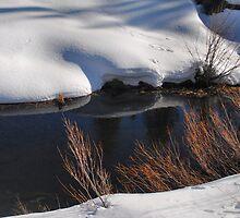 Bear River In The Snow 1 by Lenny La Rue, IPA