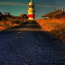 Guiding Light by Steven Maynard