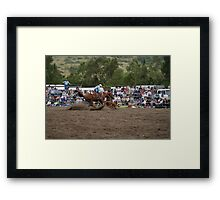 Picton Rodeo ROPE12 Framed Print