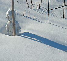 Snowed In by Al Bourassa