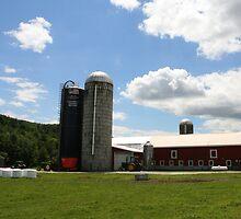 A Day at the Farm by Matt Rhodes