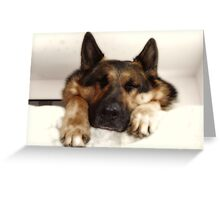 Another Good Dog Day! Greeting Card