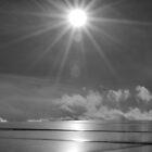 Sun or Star by Richard Nelson