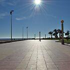 Deserted Promenade by Richard Nelson