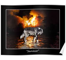 """Survivor"" Grey Wolf & Burning Forest Fire Poster"