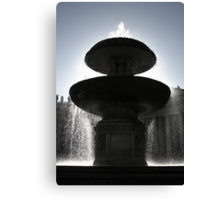 And from the Fountain Sprung the Water of Life Canvas Print