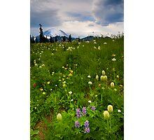Meadow Beneath the Storm Photographic Print