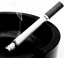 High contrast cigarette in ashtray by GordonScott