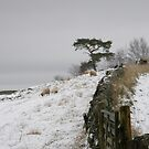 bleak midwinter by dinghysailor1