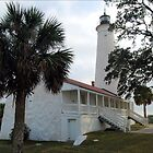 St Marks Lighthouse by Donnie Shackleford