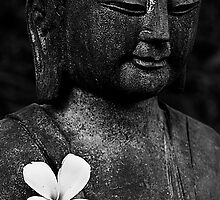 Inner Contentment by Steven  Siow